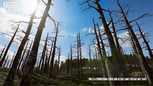 A Forest Of Barren Trees In PUBG Mobile Erangel 2.0 Map Can Hide Something Dangerous