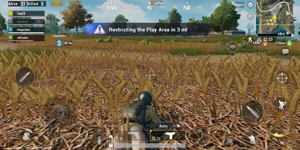 Cover yourself in the grass to try not to get seen by adversaries in PUBG Mobile