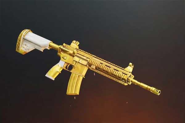 DMR (Marksman Design Rifle)