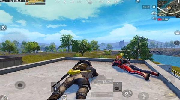 Duo in combat